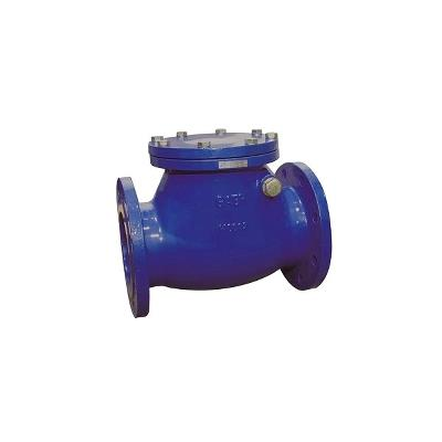 GAER - Swing Check Valve