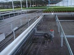PVC-Greenhouses-Holland-4